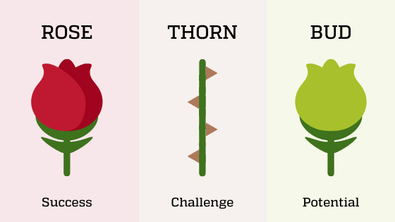 Rose, Thorn, Bud explanation. Rose is a success. Thorn is a challenge. Bud is Potential.